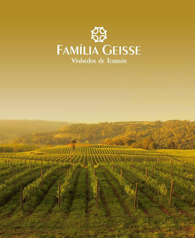 Wouldn't it be incredible to go on a ride through this beautiful vineyard? Photo: Geisse Family Facebook.