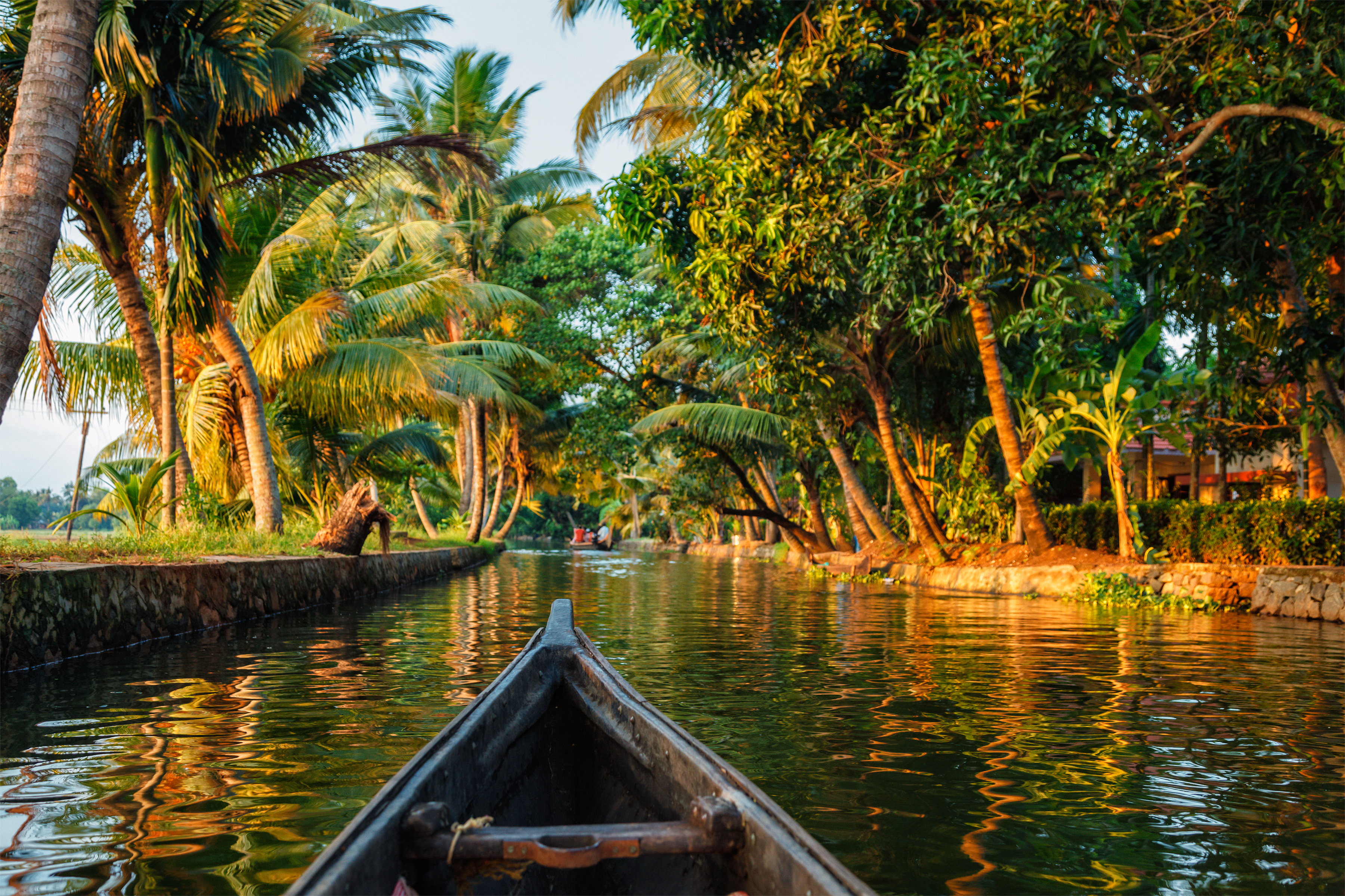 backwaters of kerala in india