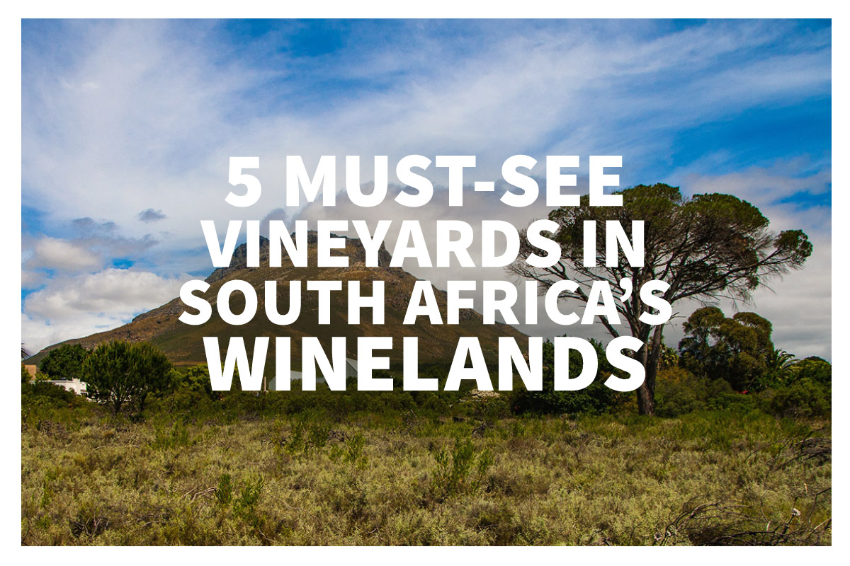 South Africa's Winelands region is a must for any real wine lover