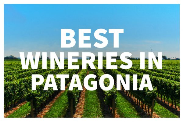 check out the best Patagonia wineries!