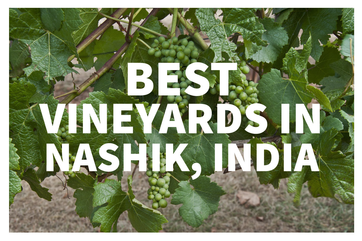 Best Vineyards in Nashik India Jaya Travel amp Tours : 2017 02 21 Wine Wednesday Nashik IndiaBlog from www.jayatravel.com size 1200 x 800 jpeg 301kB