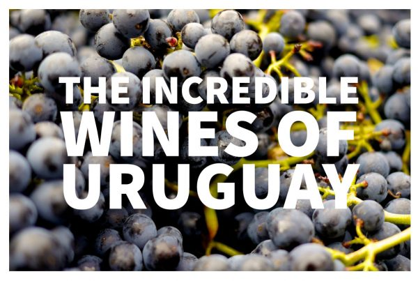 Uruguay wine is some of the finest in the world!