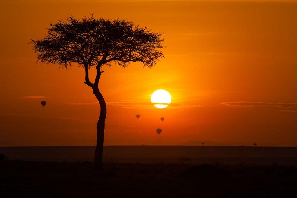 Hot air balloons at sunset in Maasai Mara.