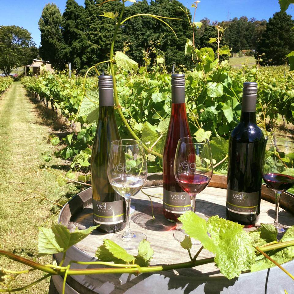 Selection of wines from Tasmanian winery, Velo Wines.