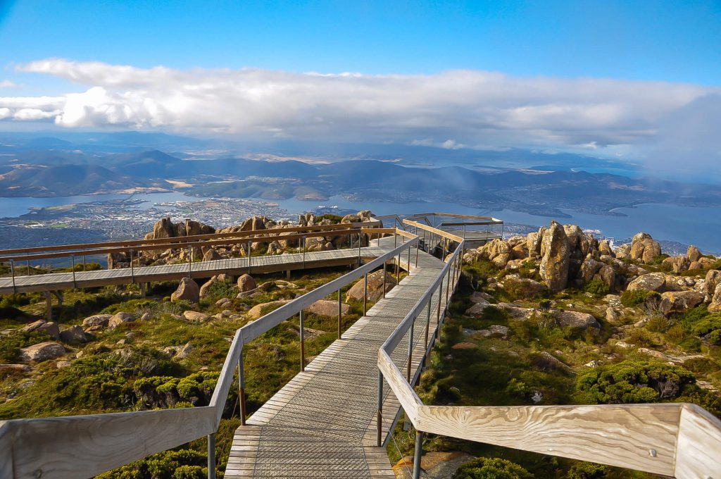 Mount Wellington boardwalk