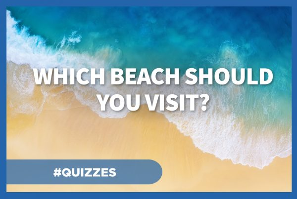 Which beach should you visit?